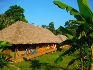 tambopata amazon lodge