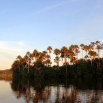 Lake Sandoval - Tambopata National Reserve 3 days